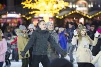 В Туле завершились новогодние гуляния, Фото: 15