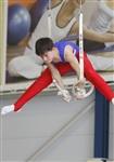 Первый этап Всероссийских соревнований по спортивной гимнастике среди юношей - «Надежды России»., Фото: 12
