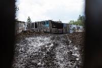 Коровы, свиньи и горы навоза в деревне Кукуй: Роспотреб требует запрета деятельности токсичной фермы, Фото: 26