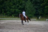 В Ясной поляне стартовал турнир по конному спорту, Фото: 136