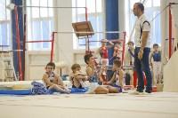 Спортивная гимнастика в Туле 3.12, Фото: 35