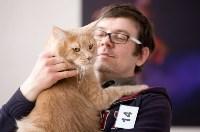 Выставка кошек. 4 и 5 апреля 2015 года в ГКЗ., Фото: 127