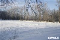 Зимняя сказка Платновского парка, Фото: 9