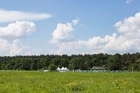«Дикая мята» состоится! Что ждет гостей на фестивале, Фото: 21