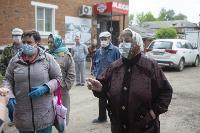 В Тульской области Богородицкий район атаковали мошки, Фото: 7
