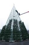 Установка новогодней елки на площади Ленина, Фото: 3
