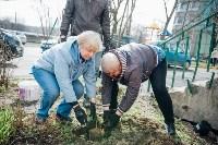 Посадка деревьев во дворе на ул. Максимовского, 23, Фото: 9