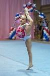 Соревнования по художественной гимнастике 31 марта-1 апреля 2016 года, Фото: 49