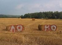 Фанатские граффити, Фото: 1