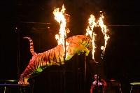 Цирковое шоу, Фото: 121