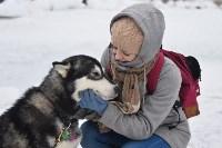 Праздник северных собак на Куликовом поле , Фото: 12