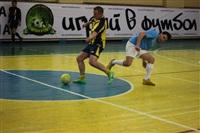 Матчи по мини-футболу среди любительских команд. 10-12 января 2014, Фото: 10