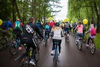 В Туле прошел большой велопарад, Фото: 77