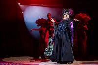 Шоу фонтанов «13 месяцев»: успей увидеть уникальную программу в Тульском цирке, Фото: 271