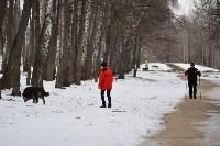 В Центральном парке прошёл рейд по выявлению нарушений выгула собак, Фото: 15