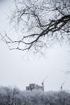 Темная сторона Платоновского парка, Фото: 7