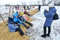 Праздник северных собак на Куликовом поле , Фото: 106