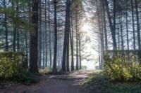 Центральный парк, утро, осень, Фото: 25