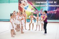 "Спортивная гимнастика, клуб ""Алина"", Фото: 3"