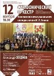Оркестр Новомосковского музыкального колледжа выступил с концертом в Казани, Фото: 8