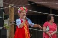 В Туле прошел народный фестиваль «Дорога в Кордно. Путь домой», Фото: 83
