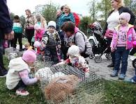 В Пролетарском округе Тулы начали праздновать День города, Фото: 28