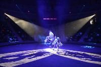 Цирковое шоу, Фото: 90