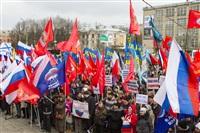 В Туле проходит митинг в поддержку Крыма, Фото: 14