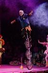 В Тульском цирке прошла премьера аква-шоу, Фото: 24
