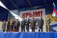 Митинг в Туле в поддержку Крыма, Фото: 35