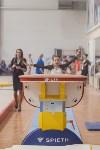 Первенство ЦФО по спортивной гимнастике, Фото: 113