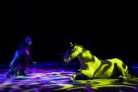 Туляков приглашают на новогоднее представление «Ёлка в цирке», Фото: 82