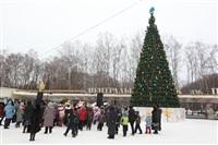 Открытие елки в Центральном парке, Фото: 7