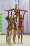 Соревнования «Первые шаги в художественной гимнастике», Фото: 48