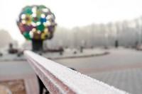 Ледяное утро в Центральном парке, Фото: 29