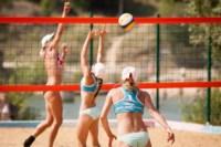 Пляжный волейбол в Барсуках, Фото: 91
