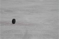 Международный детский хоккейный турнир. 15 мая 2014, Фото: 81