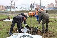 Надежда Школкина и Дмитрий Миляев высадили клены возле Ледового дворца, Фото: 14