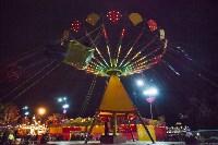 Главную ёлку Тулы открыли грандиозным фейерверком, Фото: 44