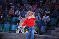 Новая программа в Тульском цирке «Нильские львы». 12 марта 2014, Фото: 7