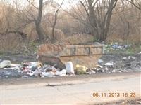 Ситуация с уборкой мусора в Пролетарском районе, Фото: 1