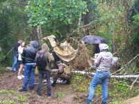 В Тульской области в лесу поисковики нашли захоронение артиллеристов и лошадей, Фото: 7