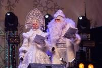 закрытие проекта Тула новогодняя столица России, Фото: 15