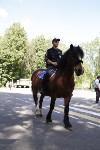 Конный патруль в Туле, Фото: 15