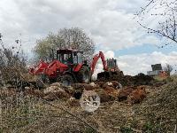 Чернский район, умерли 150 коров, Фото: 4
