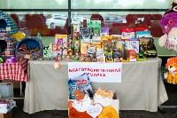 Благотворительный фестиваль помощи животным, Фото: 4