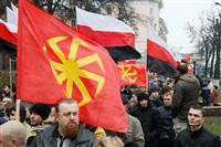 «Русский марш». 4 ноября 2013 года, Фото: 10