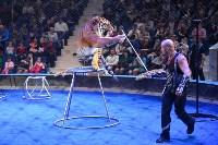 Цирковое шоу, Фото: 131