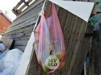 В Туле со двора «Плюшкиной» вывезли несколько грузовиков мусора, Фото: 9