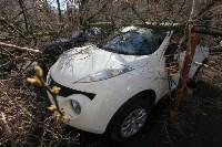 Последствия урагана. 16.04.2015, Фото: 10